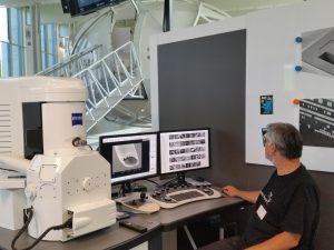 Raster-Elektronenmikroskop