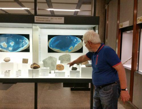 Exkursion ins Mineralien-Museum