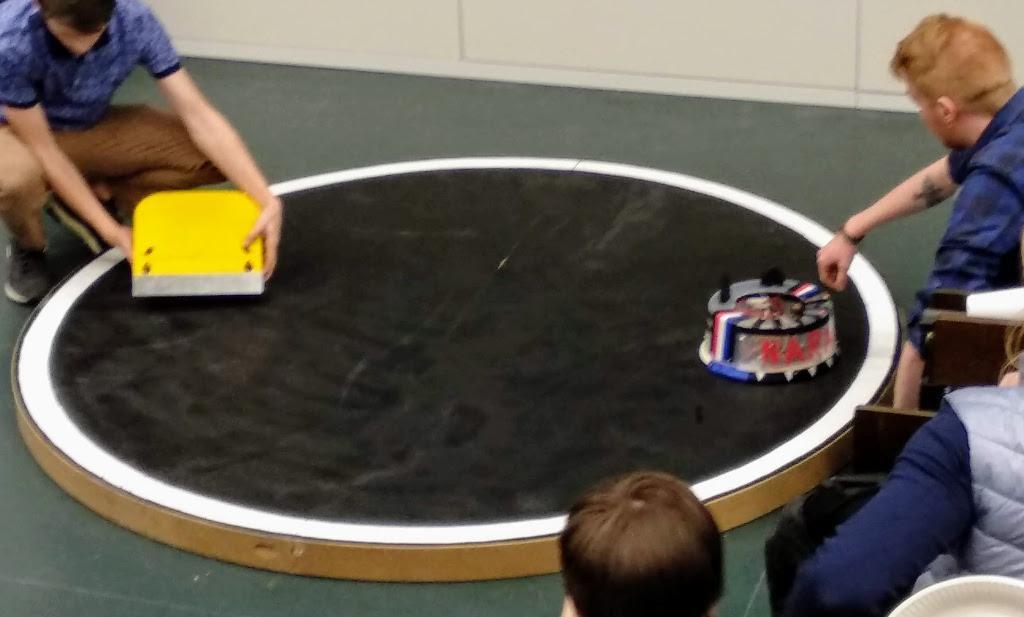 Torte gegen Käse